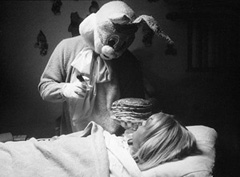 http://www.directorama.net/wp-content/uploads/2006/10/rabbit-cabinfever.jpg