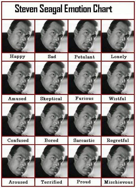 pictures_seagal_emotion_chart.jpg